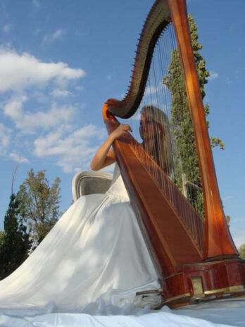 Musiciens Concertistes Classique